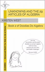 unknowns-and-the-29-articles-of-algebra
