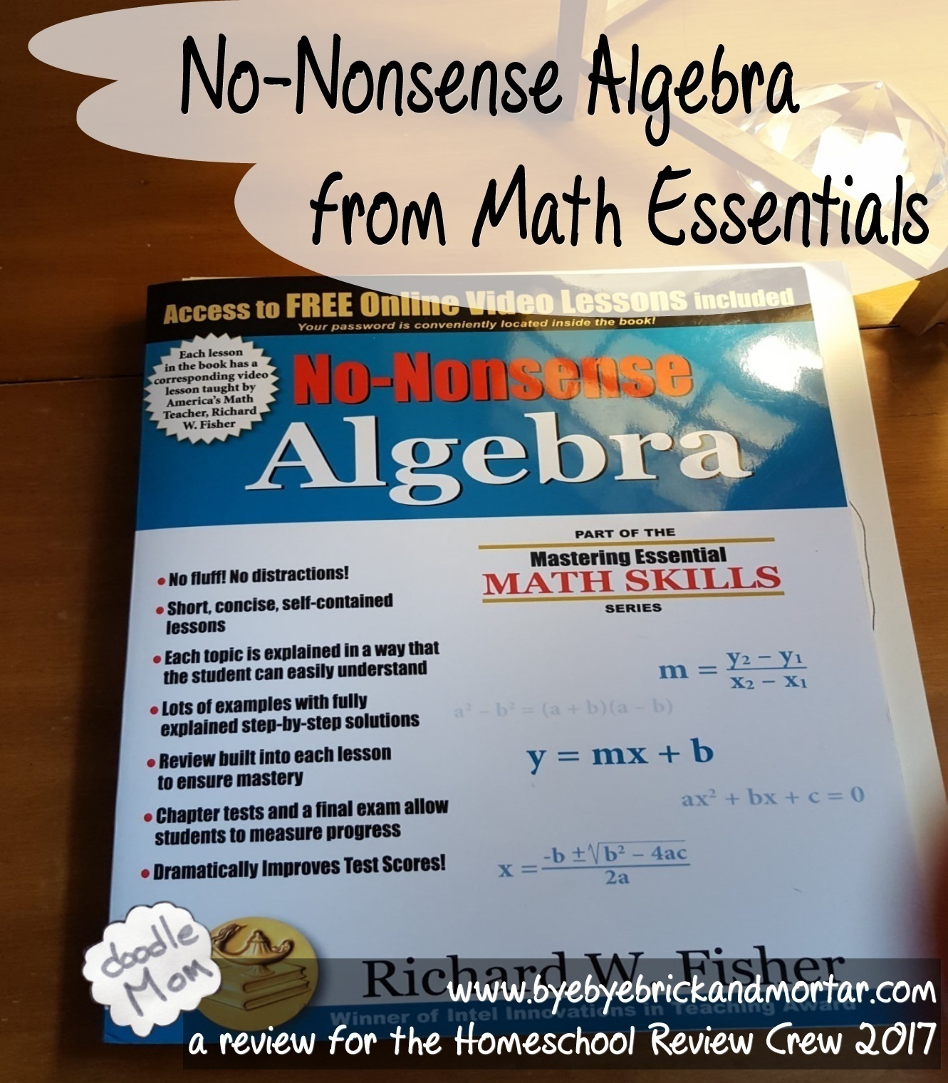 No-Nonsense Algebra from Math Essentials | DoodleMom