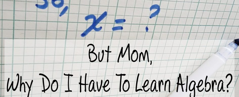 But Mom Why Do I Have To Learn Algebra?