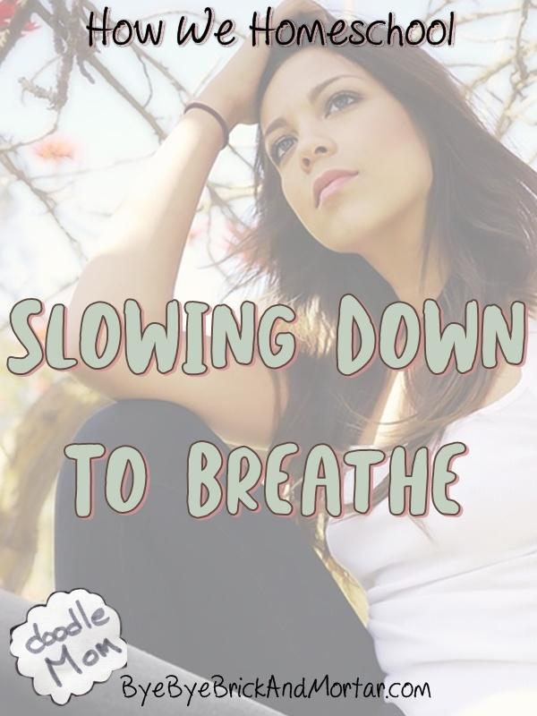 How We Homeschool : Slowing Down To Breathe 2