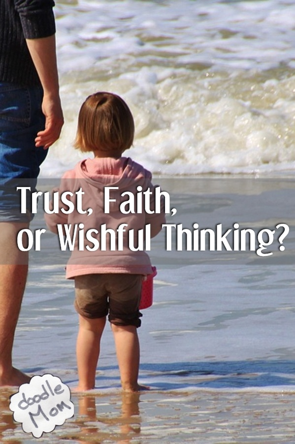 Trust, Faith, or Wishful Thinking?