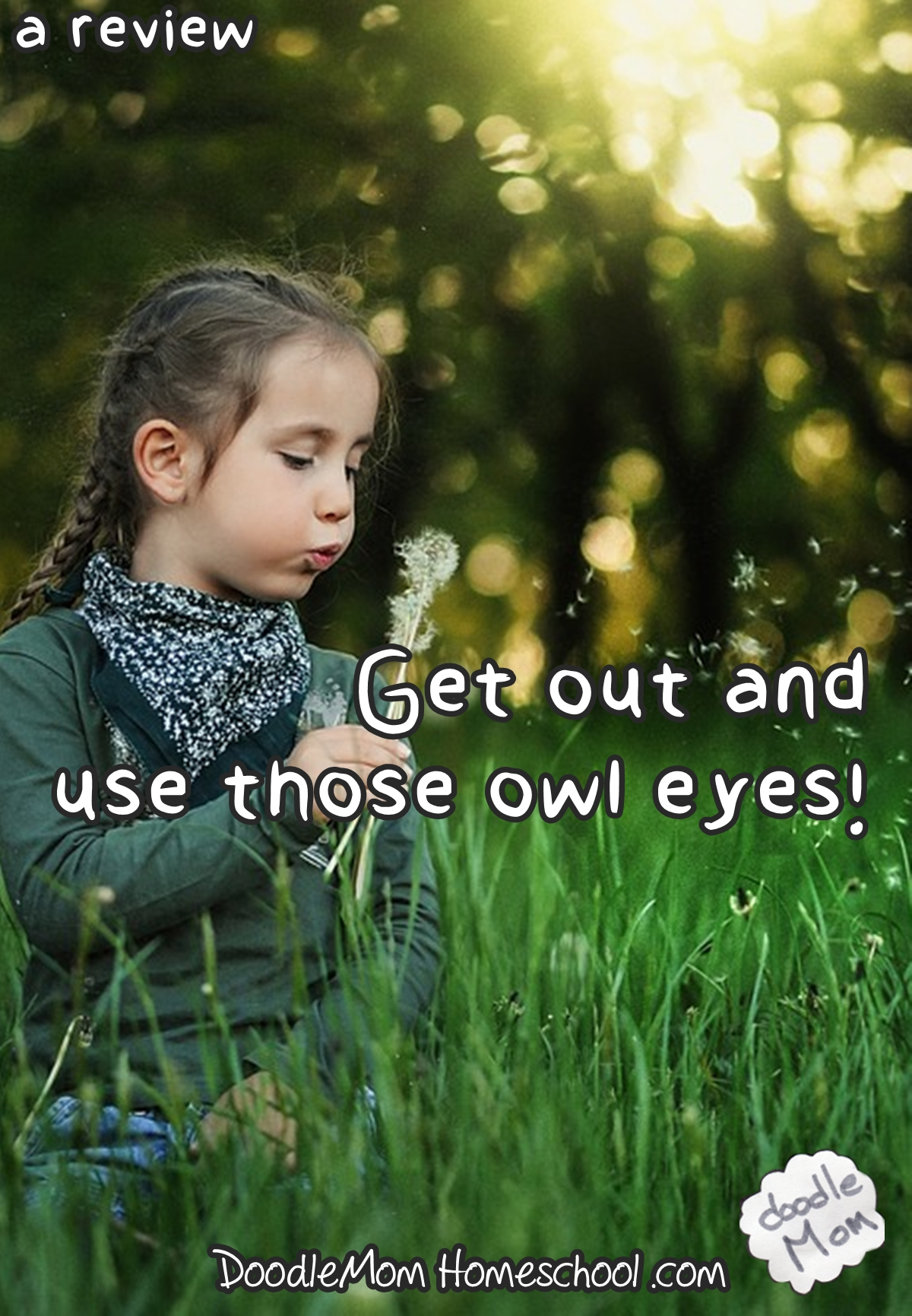 Get out and use those owl eyes