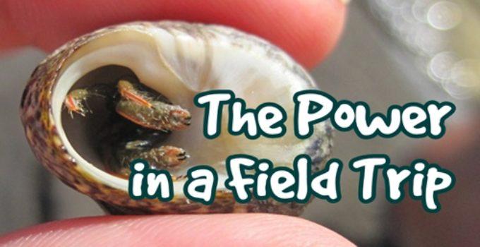 The Power in a Field Trip 5
