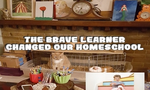 The Brave Learner Changed Our Homeschool 1